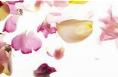 All-natural ways of re-opening and cleansing the pores and skin with Skin care merchandise from the Dead Sea